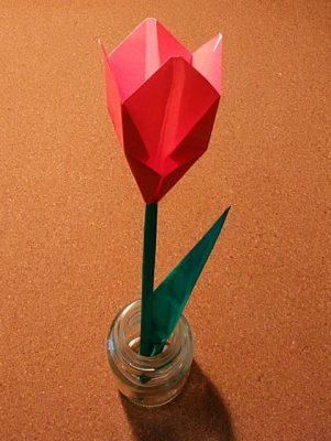 tulip_44
