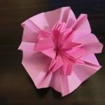 カーネーションの折り紙 立体折り方!キレイな花を母の日に♪