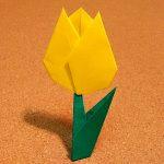 チューリップの折り紙の簡単な折り方!平面で作る楽チンな作り方!